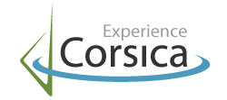 corscicarexperience
