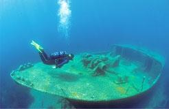 pecorella-shipwreck