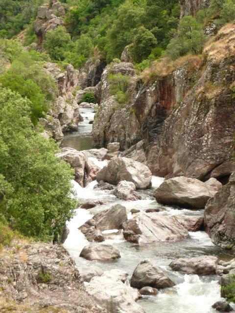 taravo-river-olivese